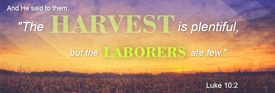 Harvest Field Autumn Fall Graphics Website Banner